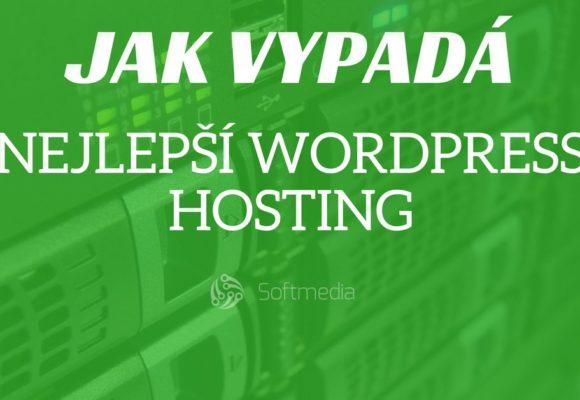 Nejlepší hosting pro WordPress – jak vypadá aco by měl umět?