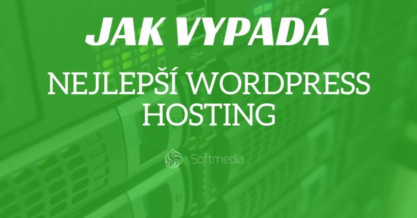 Nejlepší hosting pro WordPress – jak vypadá a co by měl umět?